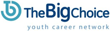 TheBigChoice.com Logo